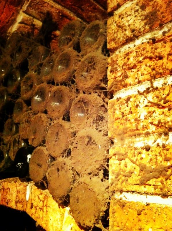 Detailní pohled na některé z archivních vín