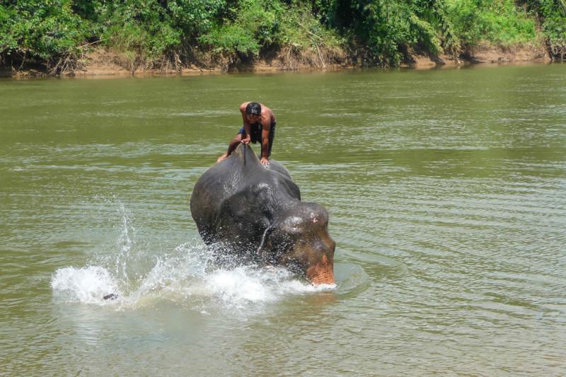 Vodní ródeo se slony - předem prohraná bitva! WangPo Elephant Camp, Kanchanaburi, Thajsko