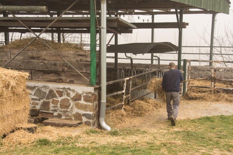 Vítězslav Dostál při své práci na rodinné bio farmě, kterou obnovil, aby splnil svůj slib, který dal svému dědečkovi na hřbitově před svým odjezdem na cestu kolem světa.