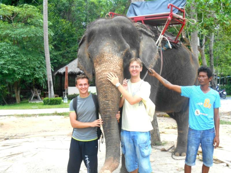 Póza u slona