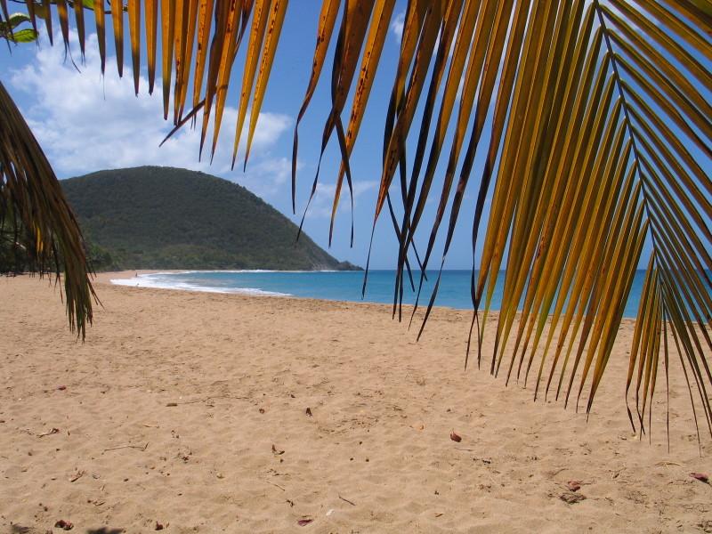 Pláž Grande Anse.