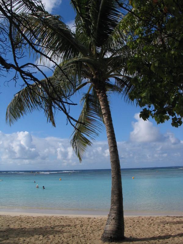 Pláž v Sainte Anne.