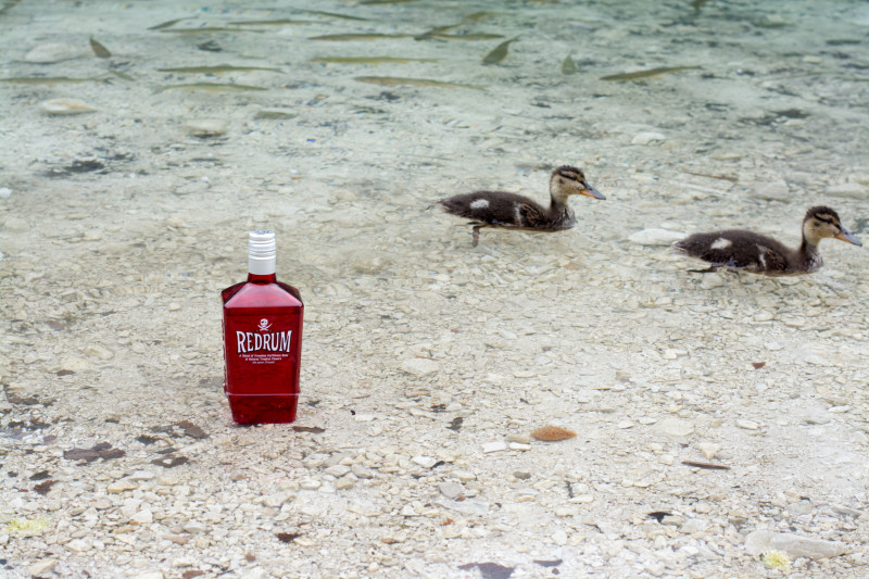 Nafotili jsme a v zápětí téměř zlikvidovali některé z hodnotných darů našich sponzorů :-) Za tento vděčíme e-shopu s prémiovým alkoholem www.liquors-spirits.cz