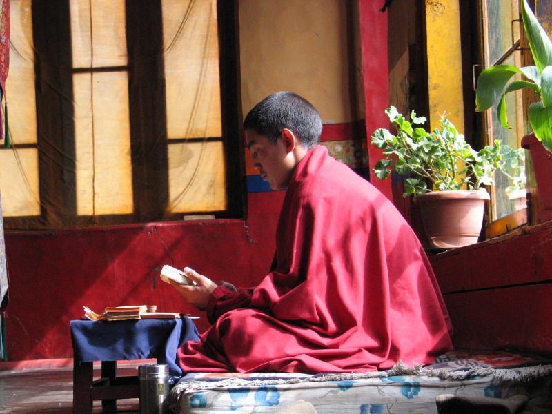 Mladá mnich v klášteře Thikse.