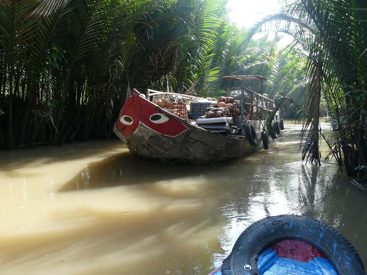 """Dalšího """"krokodýlobijce"""" necháme v klidu proplout, Mekong"""