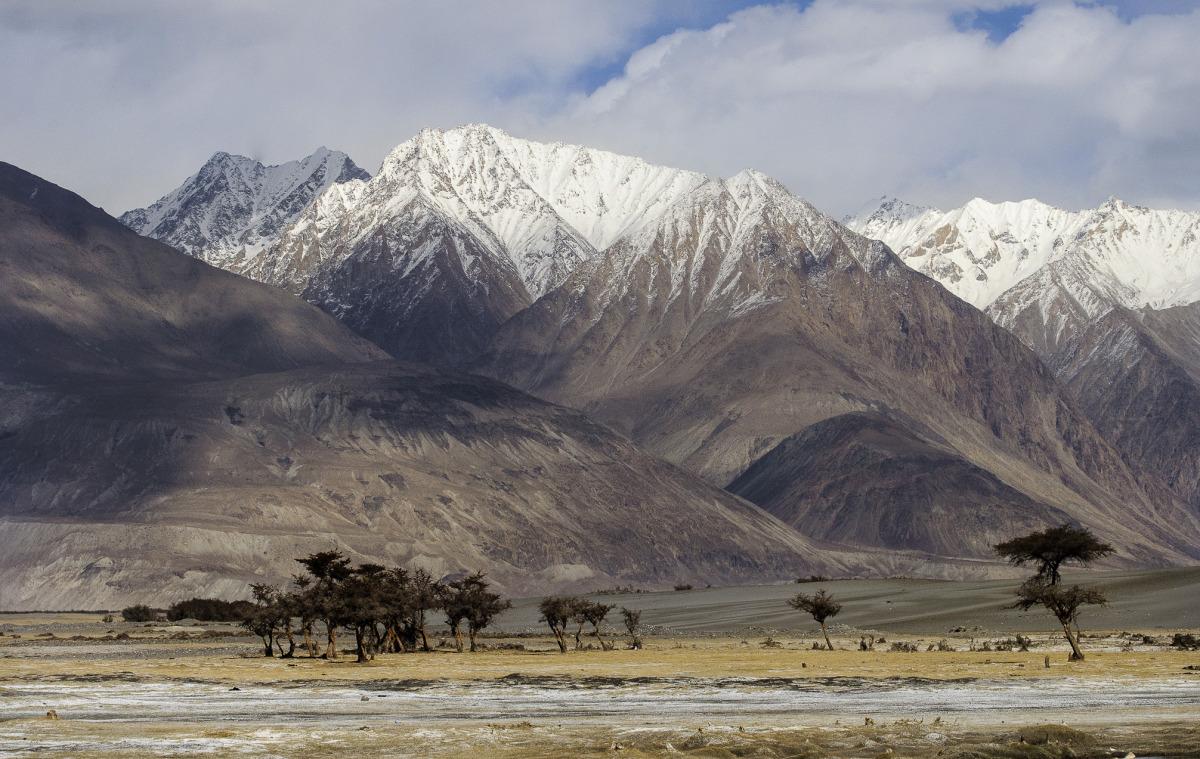 Typická krajina v Numbra Vally