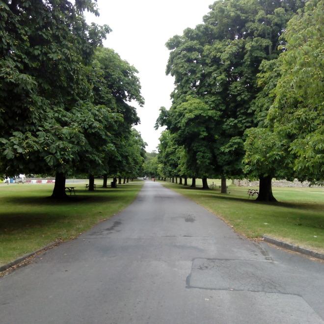 Celý areál je lemovaný vzrostlými stromy a širokou cestou