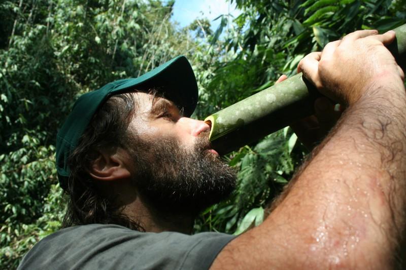 Pivo je oblíbený nápoj, ale často jste na cestách rádi za obyčejnou vodu. Voda, kterou v sobě zadržuje bambus, je pitná (Milan Daněk v Malajsii)