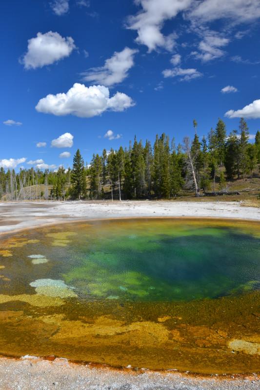 Bazén v Yellowstonském národním parku.