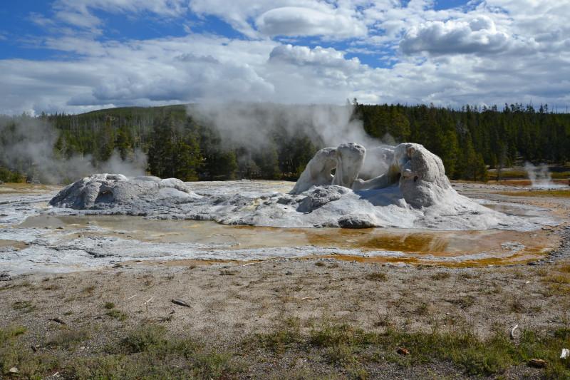 Grotto Geyser, národní park Yellowstone, USA.