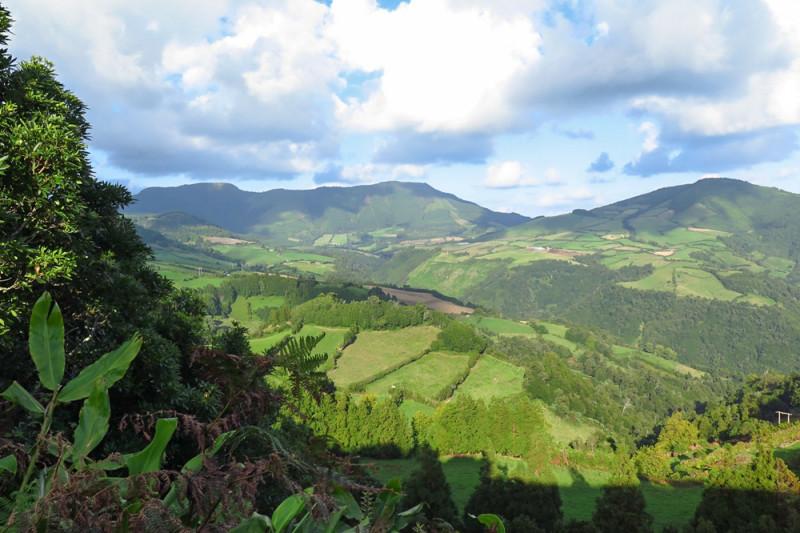 Lesnaté hory ve střední části ostrova, Azory.