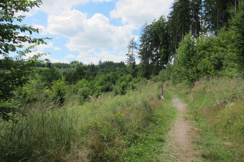 Lesy Podhůra - turistické trasy
