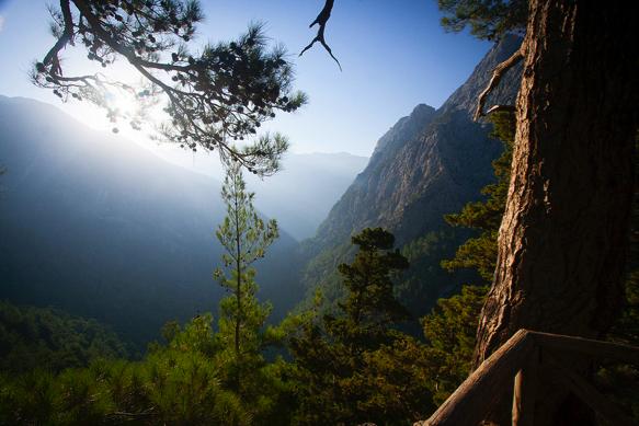 Krásná vyhlídka do hor a lesů. Kréta, Řecko