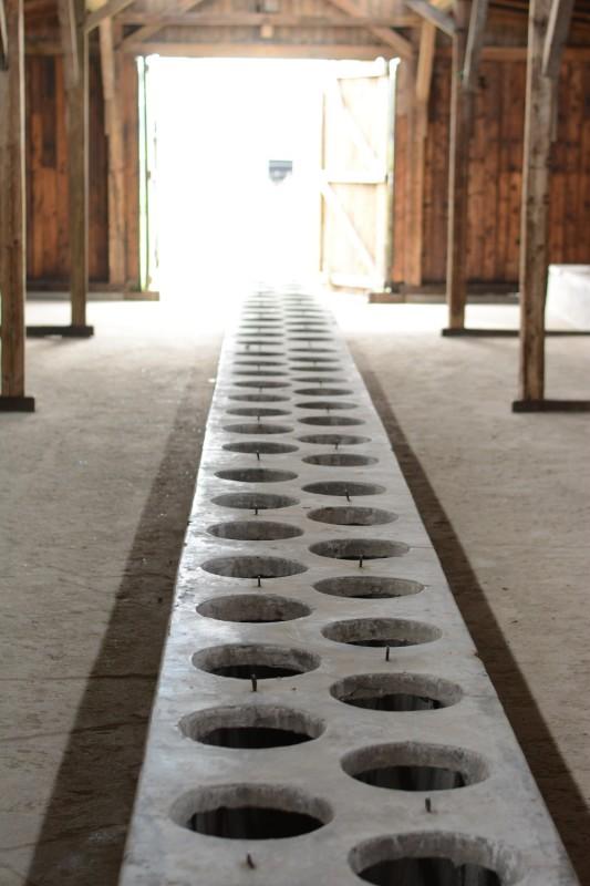 Osvětim - vězeňské toalety