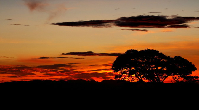 Život na cestách v Kedjom-Keku v Africe