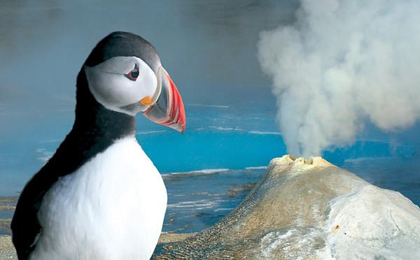 Cestovatel a fotograf Martin Loew uvádí digitální diashow Island – horká země s ledovou tváří