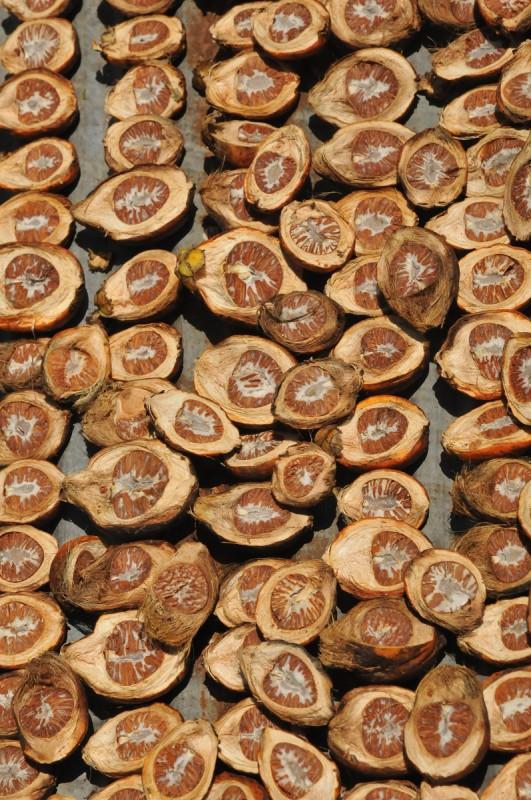 Sušení ořechů na verandě domku v Thajsku