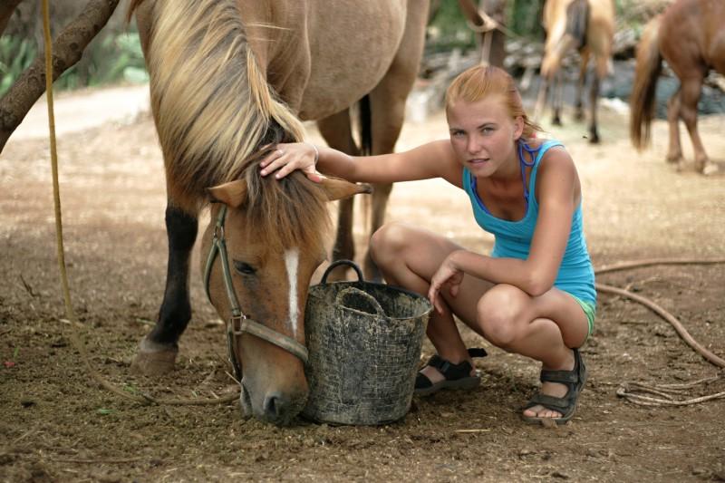 Krmení koní na farmě (foto: Martin Nesiba)