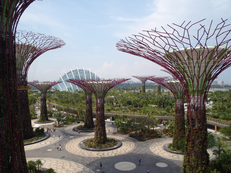 Gardens by the Bay v Singapuru