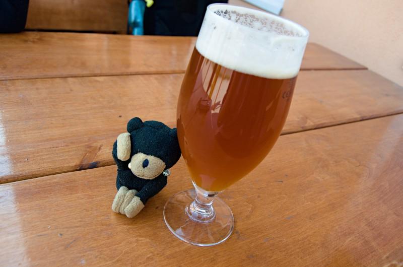 PALE ALE 15° v pivovaru Polívar, i cestovnímu medvídkovi Moodyho se z toho zatočila hlava.