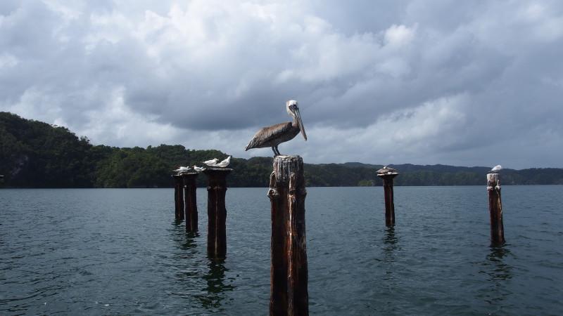 Národní park Los Haitises, Dominikánská republika