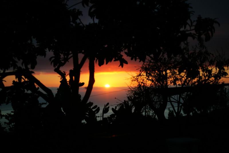 Západ slunce na farmě