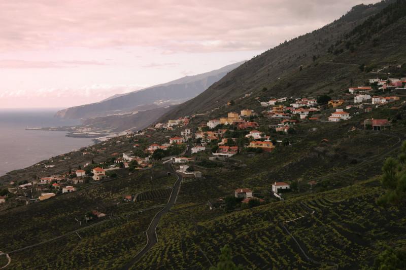 Vinice na ostrově La Palma na Kanárských ostrovech.