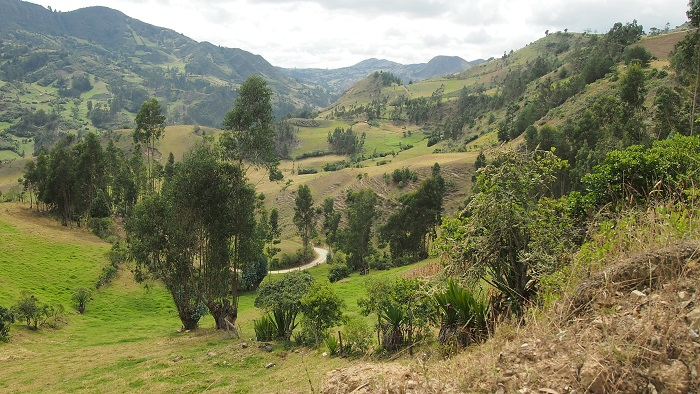 Kolumbie, Turmequé