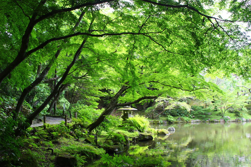 Park Narita