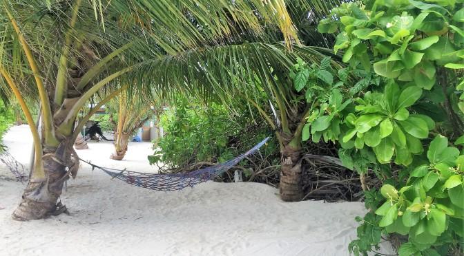 Ostrov Thoddoo na Maledivách – skutečný ráj potápěčů