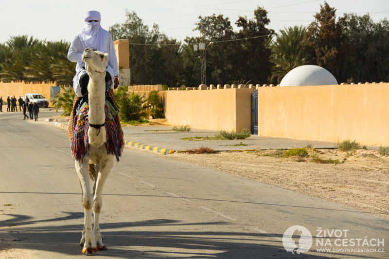 Fotoreport z cesty napříč Tuniskem – Jezdec na nádherném velbloudu tiše a vznešeně prošel kolem nás směrem k hlavnímu dějišti festivalu.