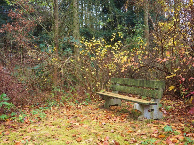 Arboretum je plné romantických míst ;-)