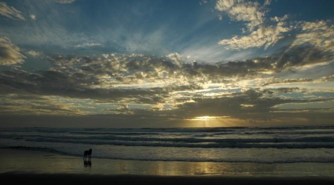 Kare Kare Beach, Nový Zéland