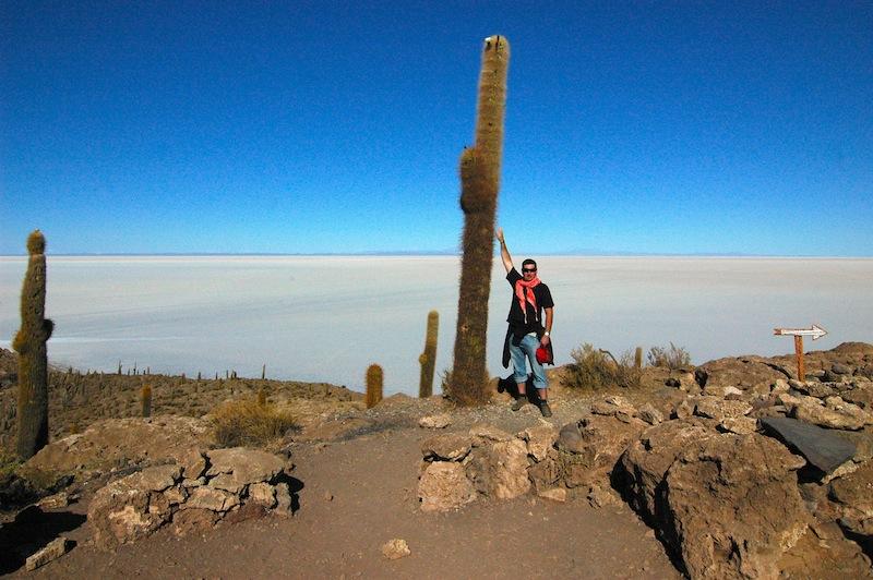 Kaktusy na ostrovech Salar de Uyuni, Bolívie