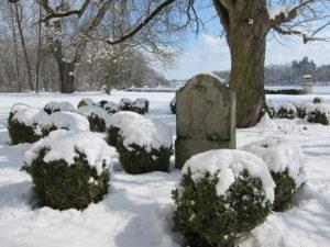 psí hřbitov, zámek Riegersburg