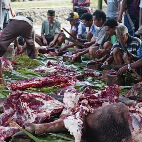 porcování masa