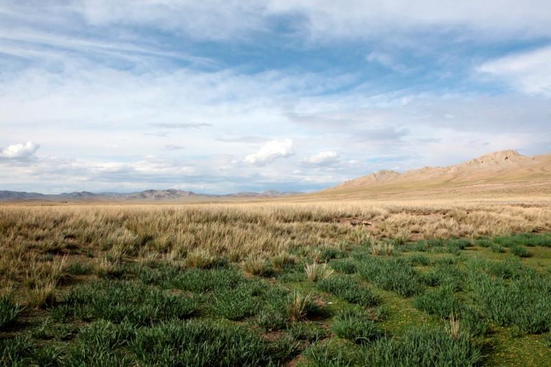Většina Mongolska je nehostinná divočina