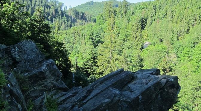 Údolím Bystřice – jednodenní výlet