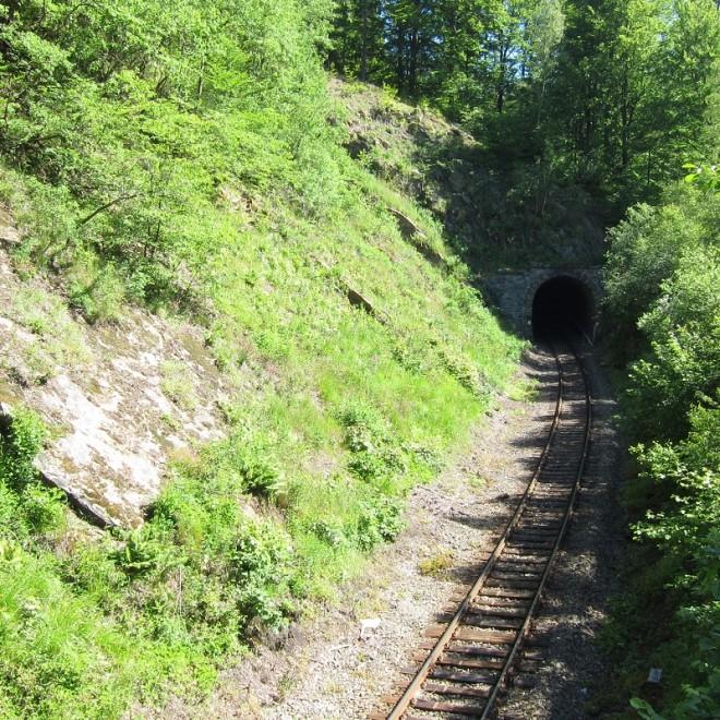 Železniční tunel u Jívové