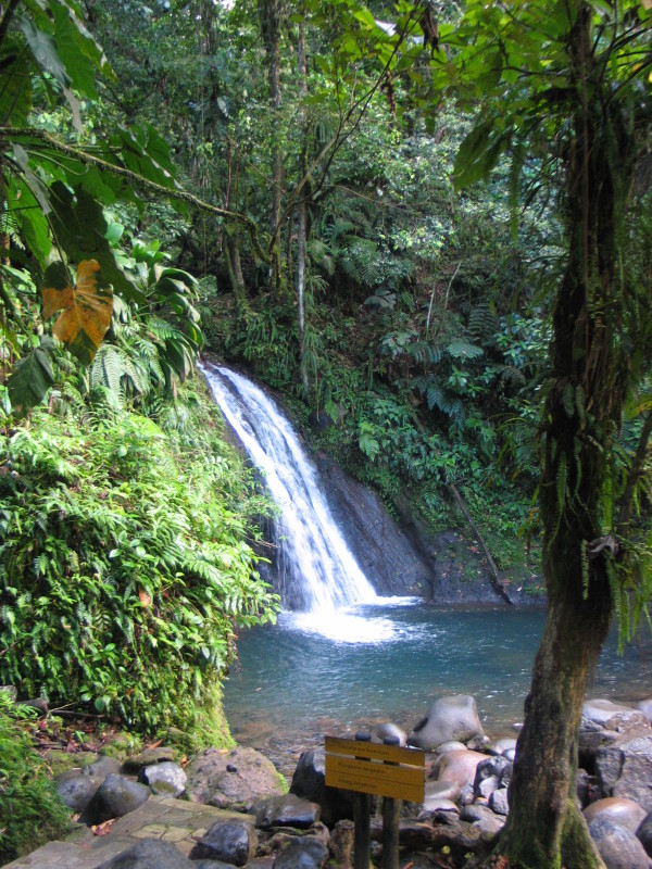 NP Guadeloupe.
