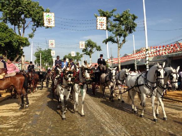 Kočárový průvod, kočáry tažené bílými koňmi na začátku každého dne Feria de Abril.