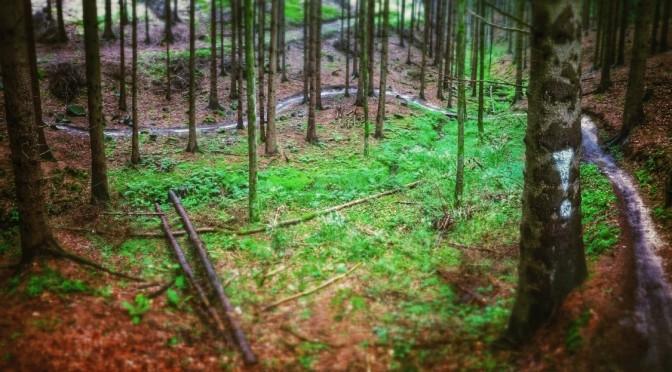 Rychlebské stezky - Černý potok