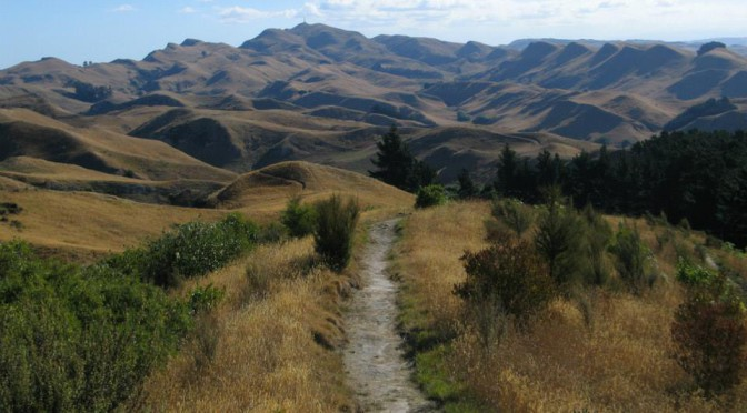 Te Mata, obr mezi námi – Nový Zéland
