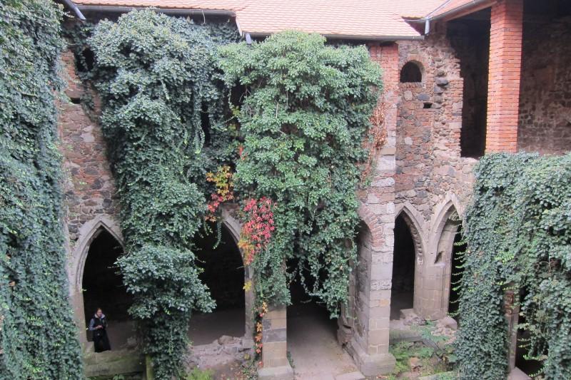 Takto časem zarostly vnitřní prostory kláštera. Současně je ale možné na fotce vidět udržovací práce (zastřešení a nezbytné zdenické práce)