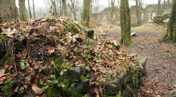Vikštejn a Jánské Koupele – romantika ruin uprostřed lesů