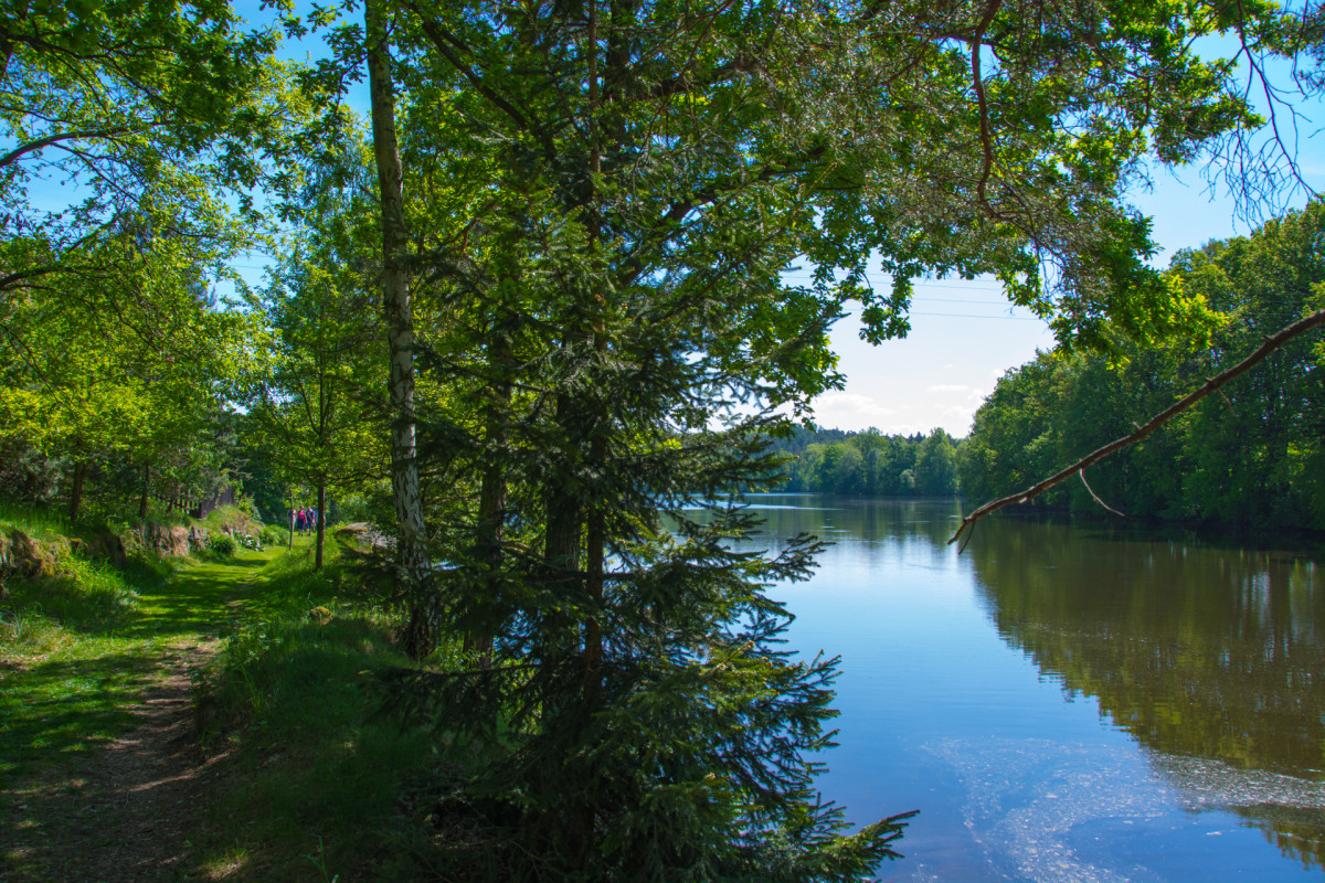 praha prčice, cesta, rybník