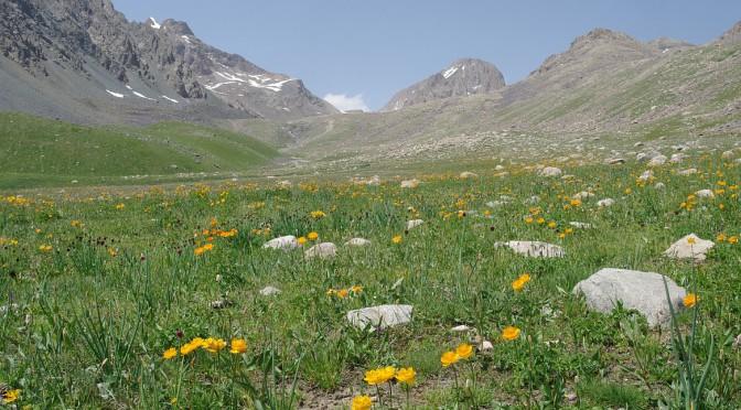 Kyrgyzský hřeben – nejen Ala-Arča