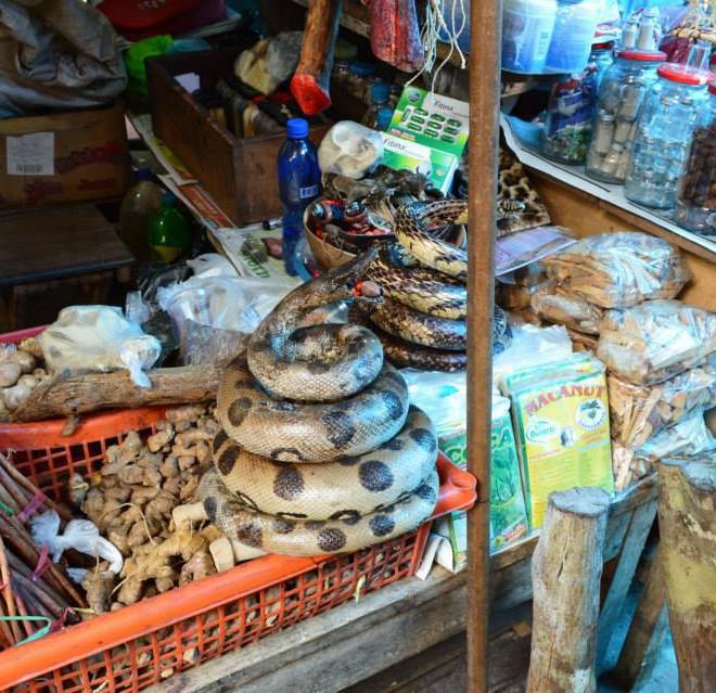 trh v Iquitos a místní suvenýry z Amazonie
