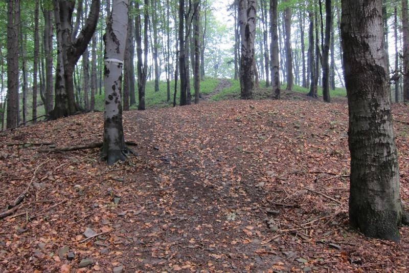 Cestou na Obřany, Hostýnské vrchy