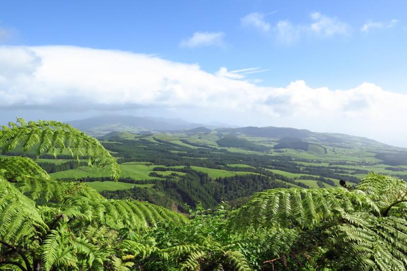 Vnitrozemí ostrova, Azory.
